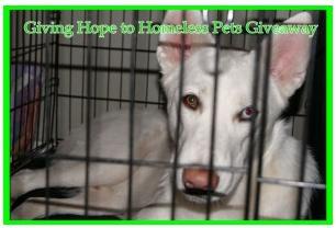 Blogger Opp! – Giving Hope to Homeless Animals!