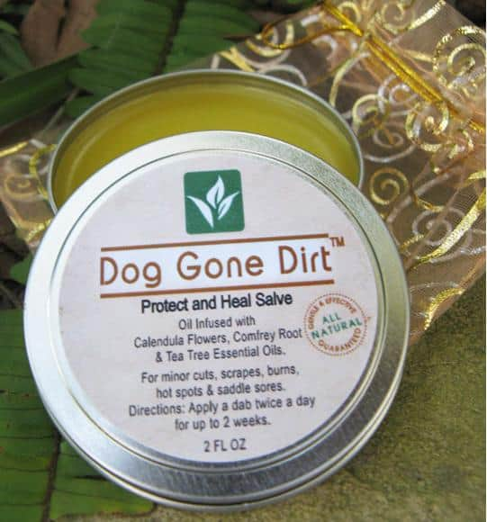 Dog Gone Dirt, Protect and Heal Dog Salve, dog salve