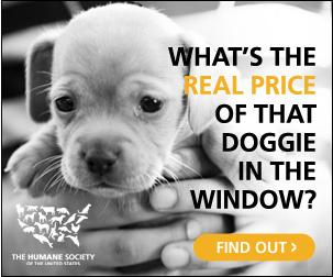 The Humane Society,  Stop Puppy Mills