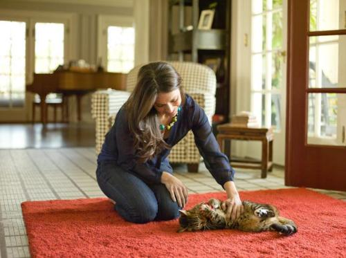Hill's Science Diet Grain-Free Cat Food
