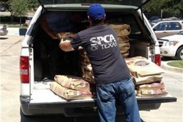 Disaster Relief for Pets and the Food, Shelter and Love Program #HillsPet