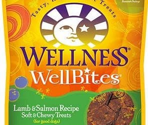 Wellness WellBites Dog Treats Review