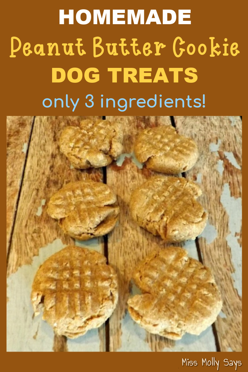 Homemade Peanut Butter Cookie Dog Treat Recipe