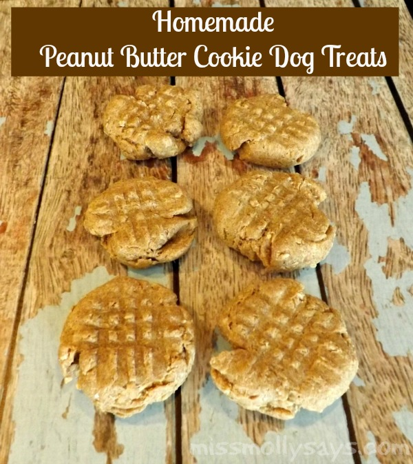 Homemade Peanut Butter Cookie Dog Treat Recipe