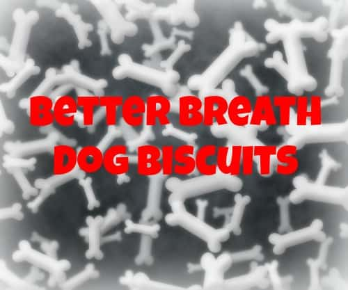 Better Breath Dog Biscuits Recipe