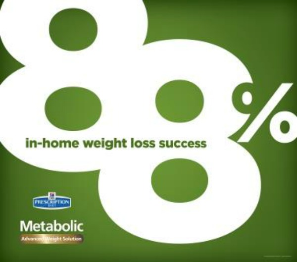 Losing the Pudge with #HillsPet Metabolic Diet