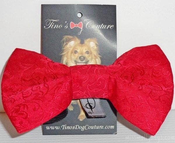 PetBox, Tino's-Dog-Courture