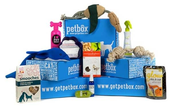 Pamper Your Pet | PetBox Review & Giveaway!