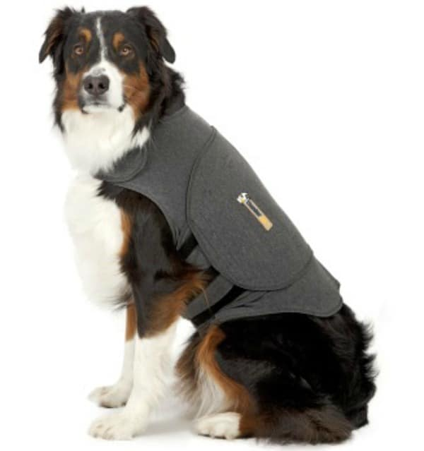 ThunderShirt | A Drug Free Solution for Pet Anxiety