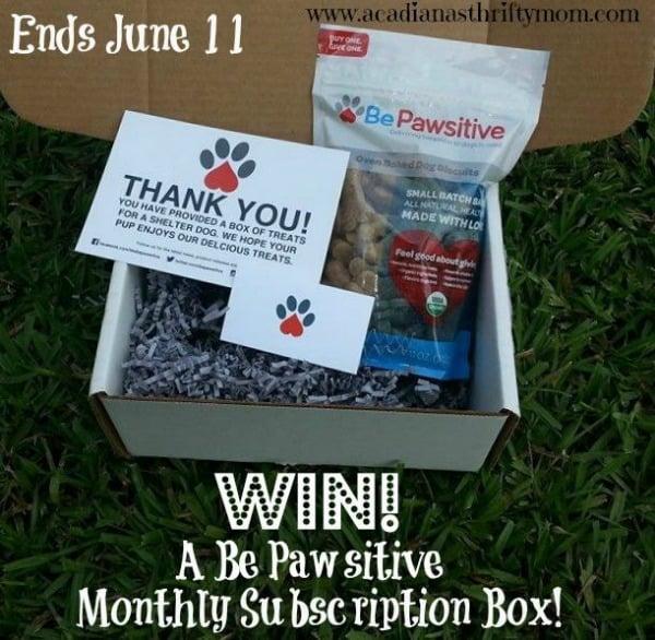 Be-Pawsitive-box
