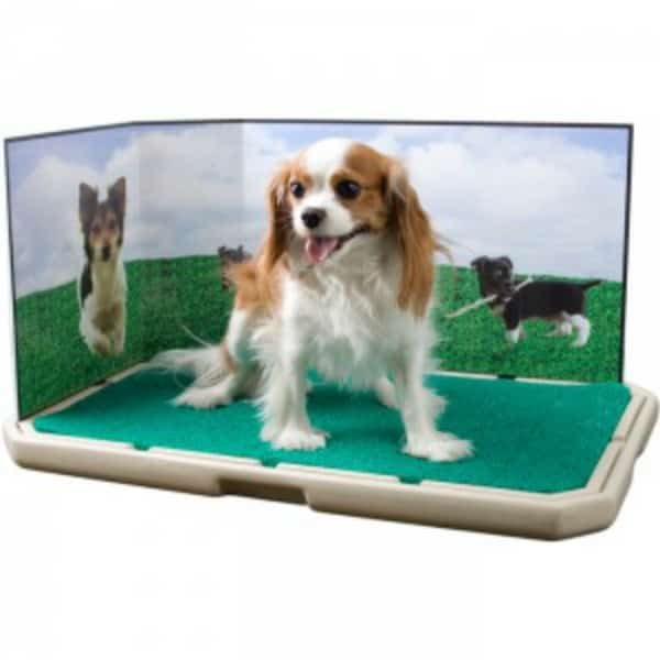 Piddle Place: Portable Indoor Puppy & Dog Potty