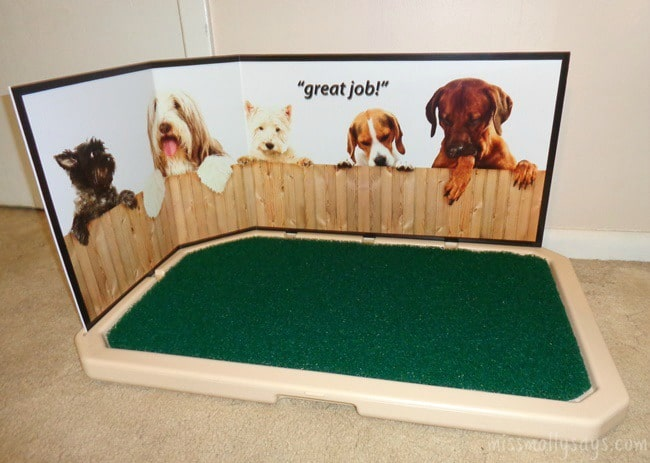 Piddle Place: Portable Indoor Puppy & Dog Potty - Miss Molly Says
