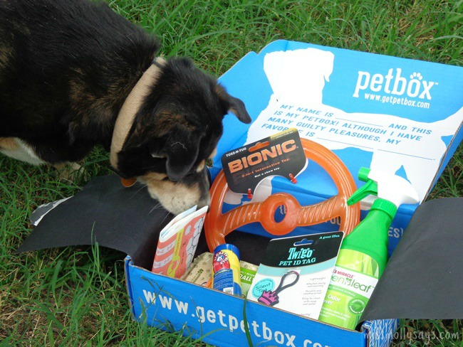 July's PetBox Brought Us Fun and Yummy Goodies!