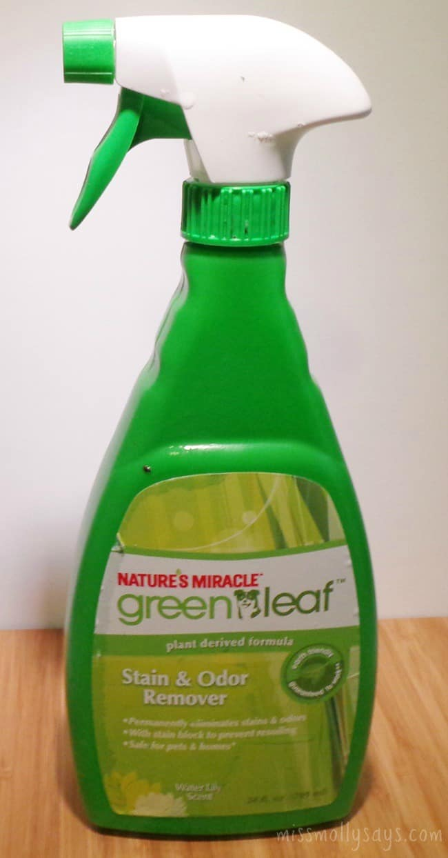 PetBox-Review-July-Green-Leaf-Stain-Odor-Remover