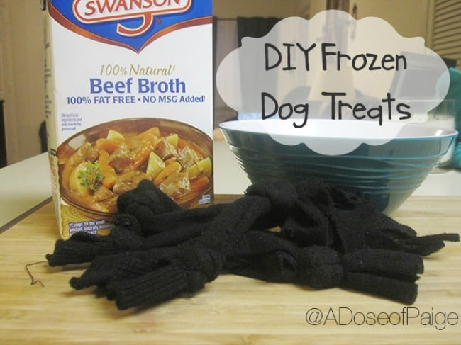 diy-frozen-homemade-dog-treats