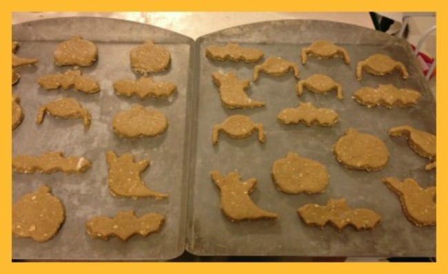 homemade-dog-treats