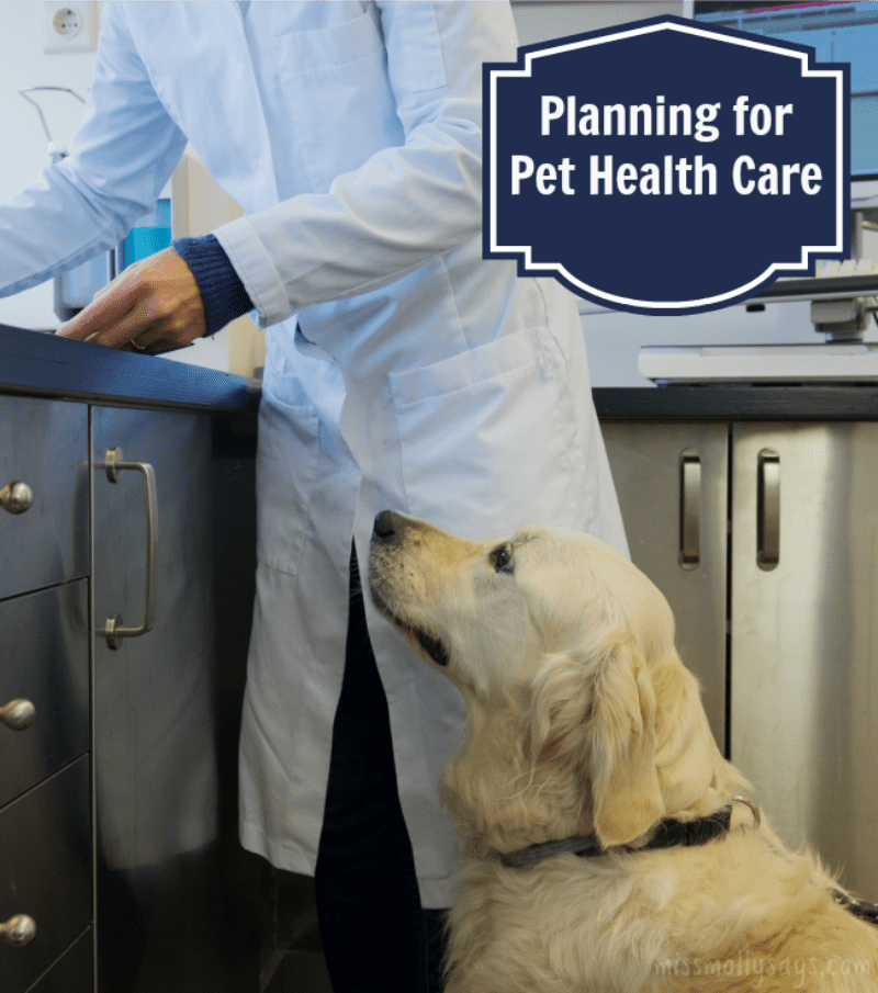 Planning for pet Health Care