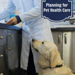 Planning-for-Pet-Health-Care