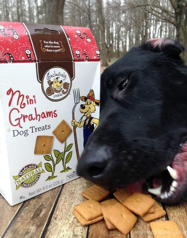 PetBox-Exclusively-Dog-Mini-Grahams-dog-treats