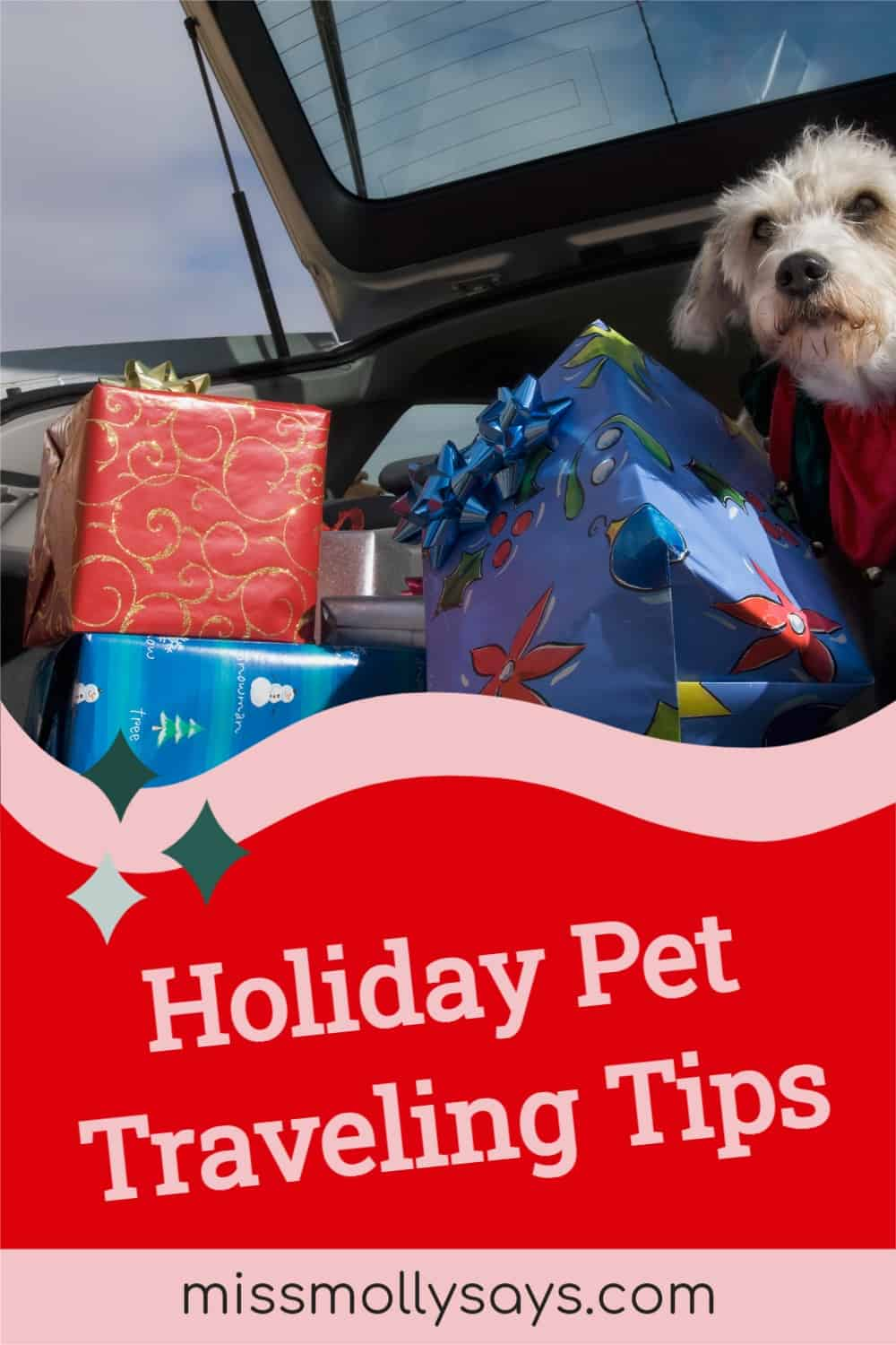 Holiday Pet Traveling Tips