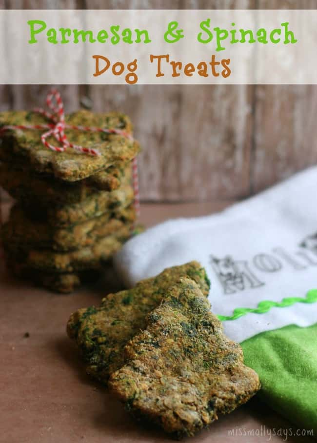 Homemade Parmesan Spinach Dog Treats