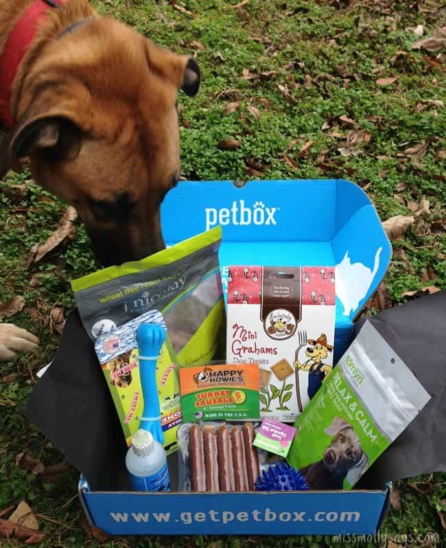 PetBox-November-Brandi