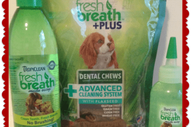 TropiClean Pet Dental Care Prize Pack Giveaway #SmoothURPooch – 10 Winners!