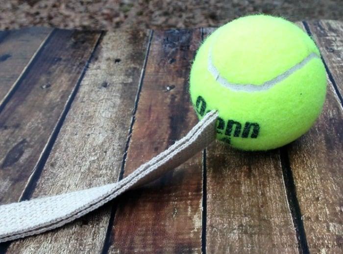 BallBoy-Flingball-Petbox-Review
