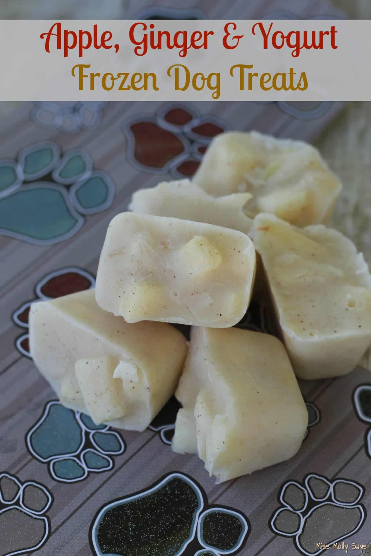 Apple Ginger Yogurt Frozen Dog Treats Miss Molly Says