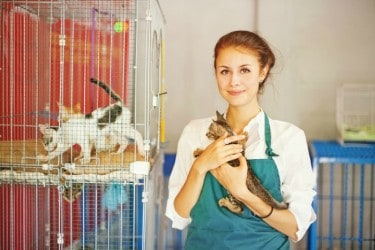How Giving to Pet Charities Gives Back to You
