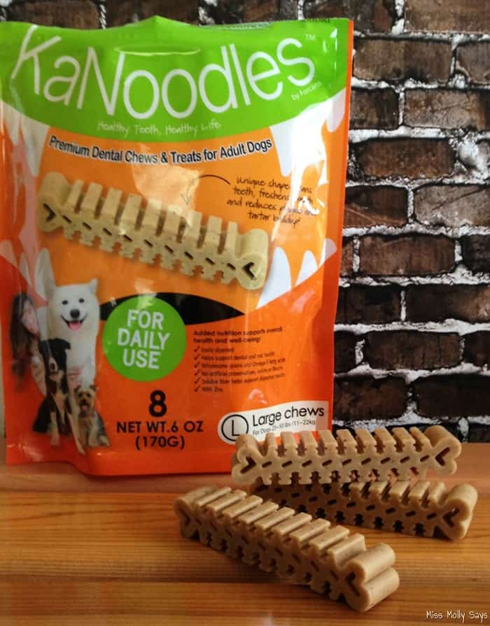 KaNoodles Dental Chews Reduces Plaque and Tartar Buildup
