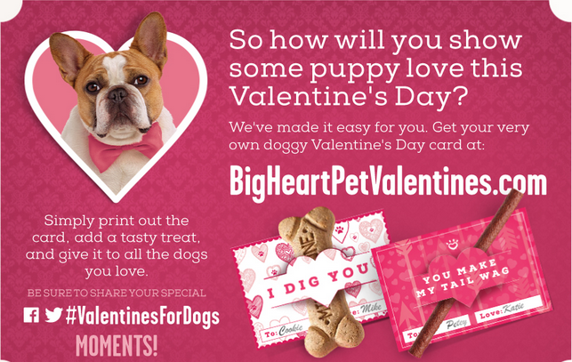 Valentine's for Dogs