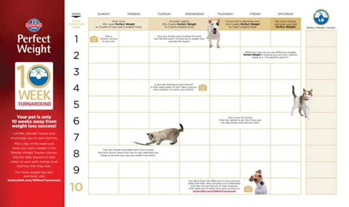 10 Weeks to #PerfectWeight with the Hill's Pet 10 Week Turnaround Calendar
