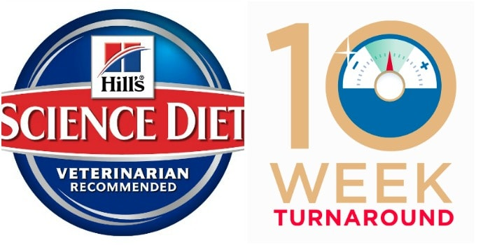 Hill's Science Diet collage - 19 Week Turnaround