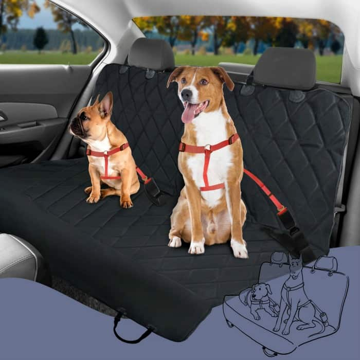 pet seat cover with seat anchors from plush paws review giveaway miss molly says. Black Bedroom Furniture Sets. Home Design Ideas