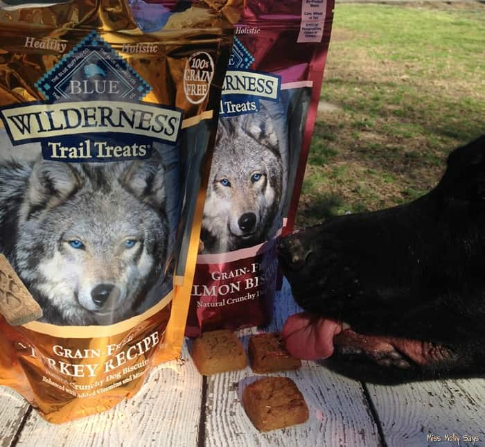Blue Buffalo Wilderness Trail Treats are Woofalicious!