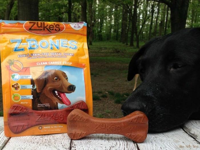Zuke's Z-Bones Grain Free Dental Chews for Dogs #Review #petpalooza