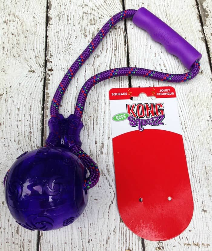If you are looking for an absolute pawsome dog toy that is strong, tough, built to last and FUN -  the KONG Squeezz Ball with Handle is it! #Review