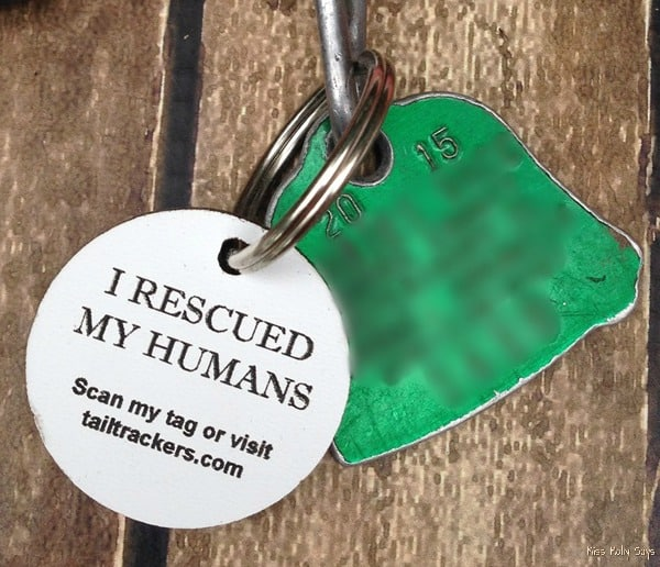 Tail Trackers Scannable Pet ID Tag