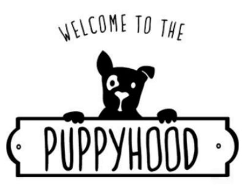 Welcome to the Puppyhood
