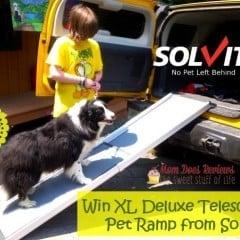 Enter to #win a Solvit XL Telescoping Pet Ramp!