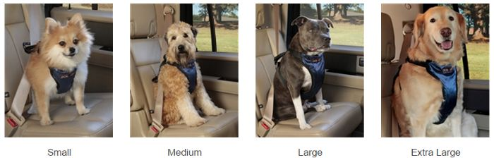 Solvit Pet Harness sizes