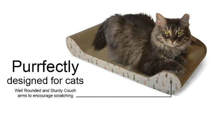 how to protect sofa from cat claws