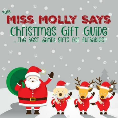 Miss Molly Says Christmas Gift Guide 2015