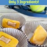 Easy Frozen Homemade Pumpkin Dog Treats with only 3 Ingredients