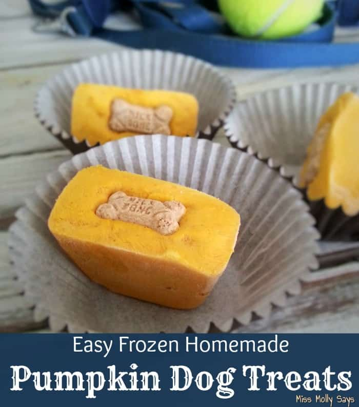 Easy Frozen Homemade Pumpkin Dog Treats