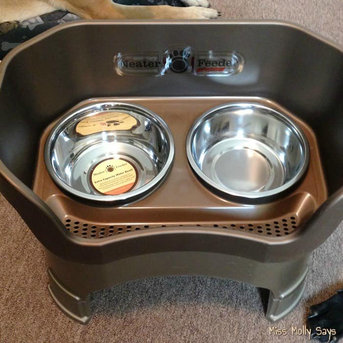 Neater Feeder Mess Proof Pet Feeder Saves Time Cleaning #Review #ChristmasMM15