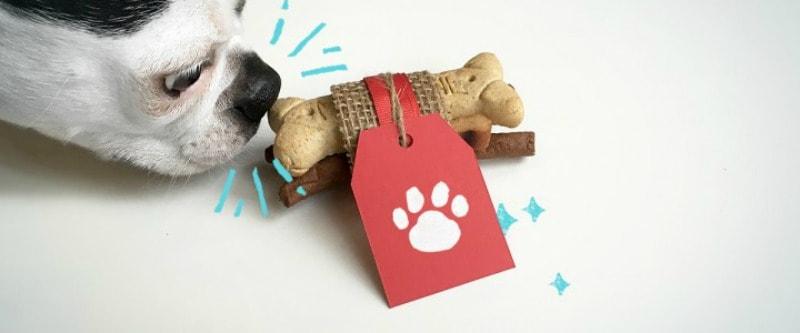Doggy Gift Box 3