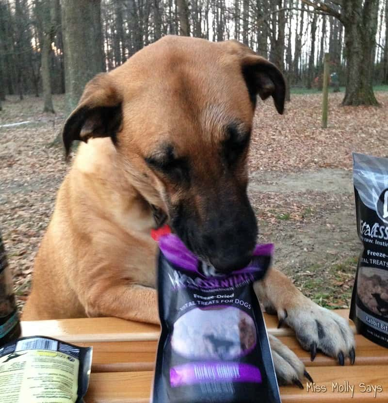 Vital Essentials Raw Vital Treats for Dogs #Review #ChristmasMM15