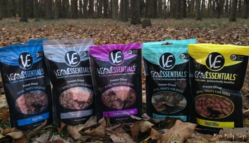 Vital Essentials Raw Vital Treats for Dogs & Cats #Review #ChristmasMM15